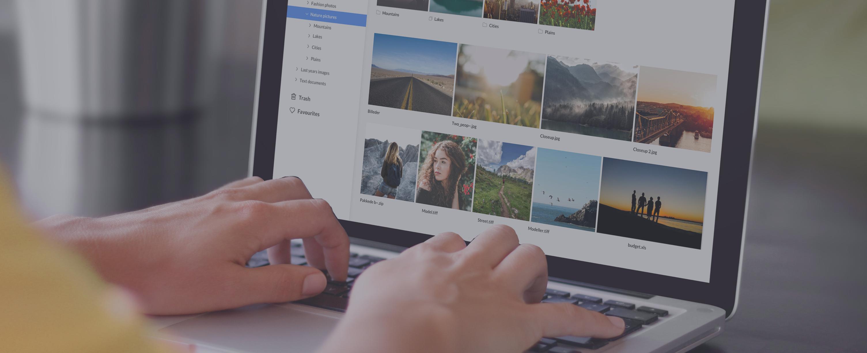 Kontainer - Kontainer kan bruges til at organisere virksomheders billeder og filer online